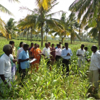 DKSHA Organic Agri initiatives a model programme for the farmers of other areas who want to go Organic